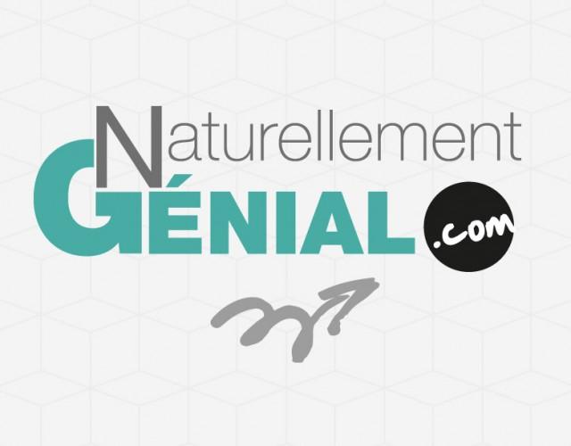 création identité visuelle Naturellement Genial Nantes - Studio design graphique Vert Anis